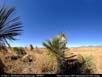 Panorama: Chihuahuan Desert vegetation