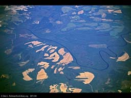 Deforestation: Clearcuts near river (aerial), North Carolina, USA