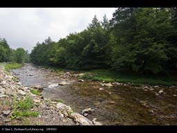 Neversink River, part of NY City's water supply