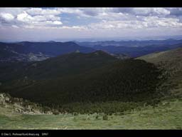 Treeline, Mount Evans, Colorado