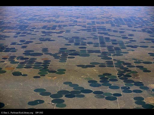 Irrigation circles (aerial), Colorado, USA