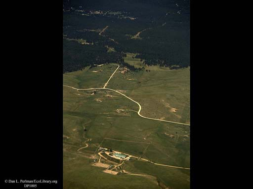 Urban sprawl reaching into forest (aerial), Western USA